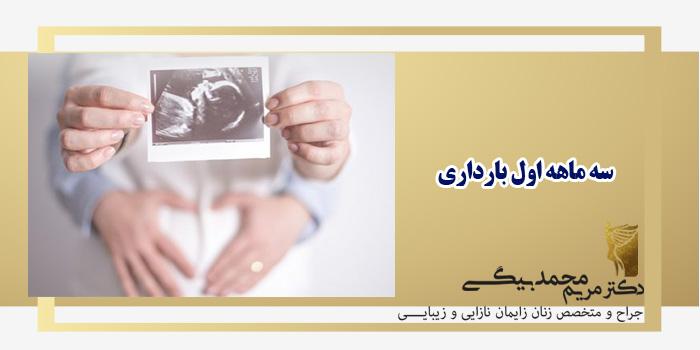 سه-ماهه-اول-بارداری