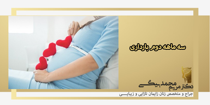 سه-ماه-دوم-بارداری